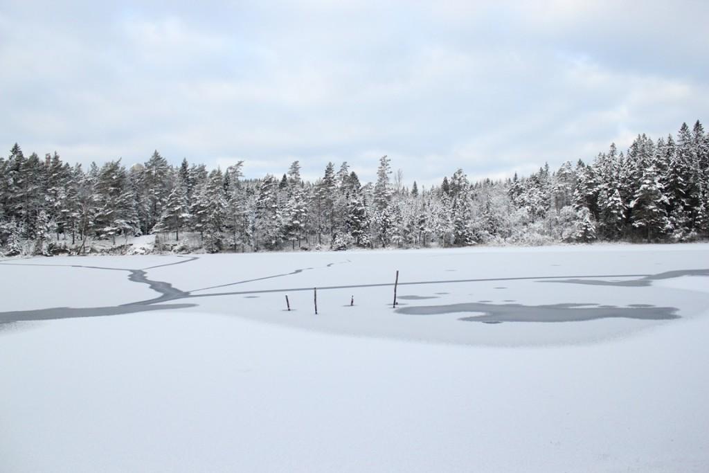 Natuur in Zweden van Touch of Sweden