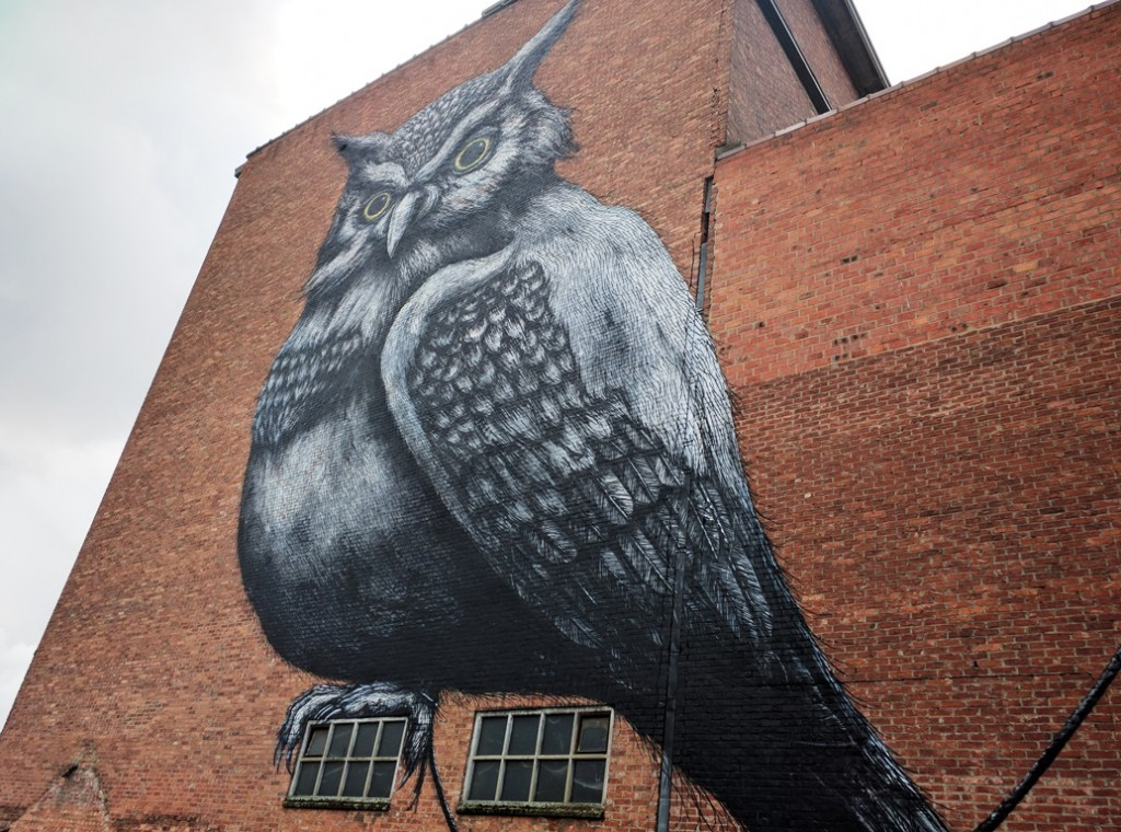 Streetart in Hasselt